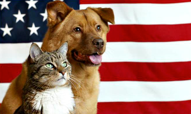Free Veteran Pet Adoption
