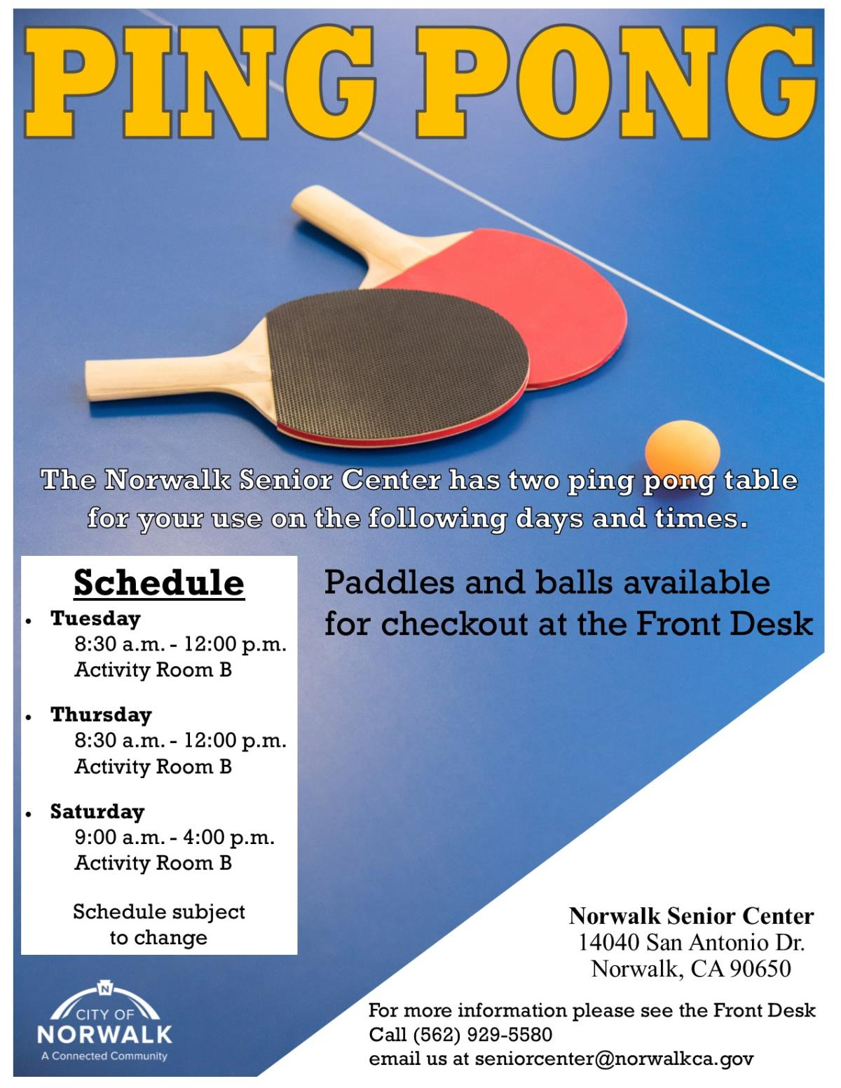 ping pong flier website.pub