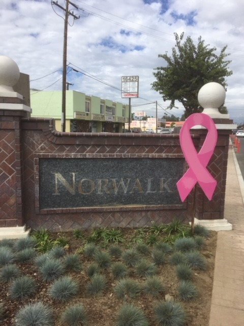 Pink Ribbon - Entry Monument