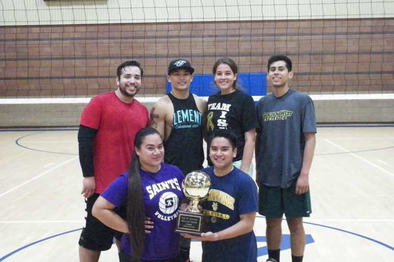 Adult Sports-Coed Volleyball - Use this one